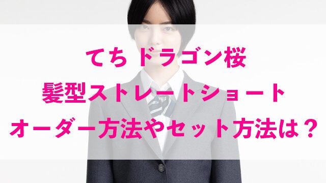 てち ドラゴン桜 髪型 ストレート ショート オーダー方法 セット方法